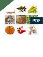 Alimentación y Hierbas Medicinales Pueblos Originales