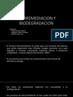 bioremmediacion.pptx