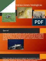 interaccionesbiolgicas-140823135530-phpapp02