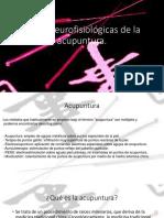 Bases Neurofisiológicas de La Acupuntura