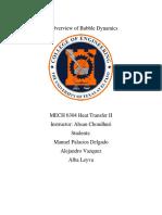 Bubble Dynamics Report.docx