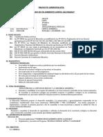 50372119-PROYECTO-AMBIENTAL-DE-LA-I-E-Nº-88031.doc
