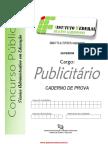 PUBLICITARIO