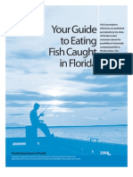 Your Guide to Eating Fish Caught in Florida