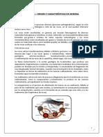 Informe N°2 de Tecnología de los materiales