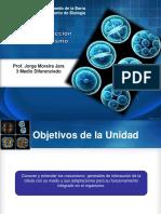 Diferencacion y Desarrollo 3 Medio