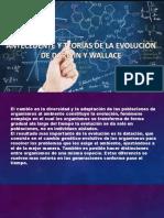 Presentación1 biologia