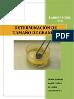 Determinacion Del Tamaño de Grano
