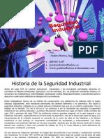 Historia de La Seguridad Industrial - Berroa