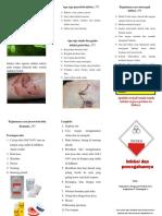 Leaflet Infeksi