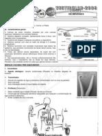Biologia - Pré-Vestibular Impacto - Helmitíases