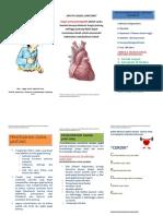 leaflet DR ALVIN.doc