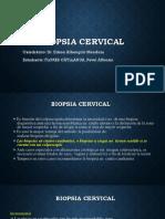 Biopsia Cervical