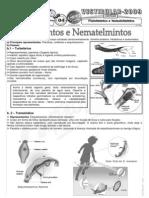 Biologia - Pré-Vestibular Impacto - Platelmintos e Nematelmintos I