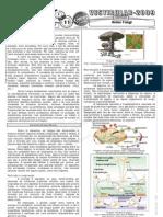 Biologia - Pré-Vestibular Impacto - Reino Fungi I