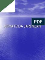 nematoda-jaringan-2008