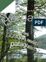 Herbariodelbosqueandinopatagonico 150527021048 Lva1 App6891