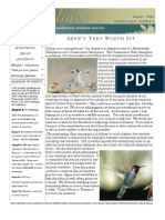 August 2007 Shorelines Newsletter Choctawhatchee Audubon Society