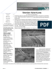 March 2008 Shorelines Newsletter Choctawhatchee Audubon Society
