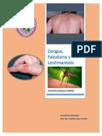 Dengue, Paludismo y Leishmaniosis