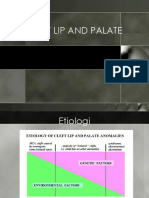 Clift Lip and Palate