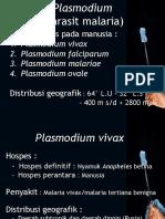 Plsmodium, Leishmania, Trypanosoma