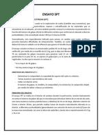 ENSAYO SPT.docx