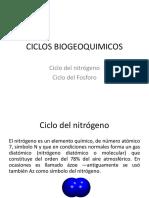 3 Ciclos Del Nitrógeno y Del Fósforo