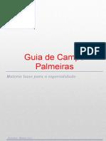 palmeirasnativasdobrasil-140624074121-phpapp01
