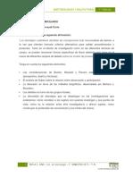 Modelo Parcial Metodología Cualitativa