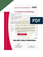 formatoscertificadosh.pdf