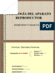 fisiologia.ppt