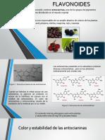 Presentacion Flavonoides y Betalaínas