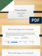 La Elasticidad. 2.pptx