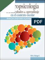 Neuropsicología de Las Dificultades de Aprendizaje en El Contexto Escolar