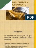 Frituras Quimica y Procesamiento
