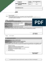 FM11-GOECOR_CIO_Informe de Actividades Del CM_CTM V01 Mercedes