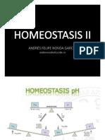 Presentación Homeostasis II(1)