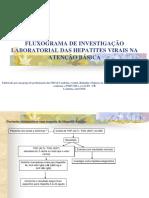 Fluxograma Investigação Hepatites Virais
