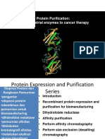 enzim - kanker terapi