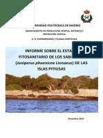 INFORME FINAL sabina pitiusas.pdf