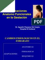 1b Modificaciones Anatomofuncionales en Gestacion