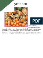 El-aguaymanto.docx