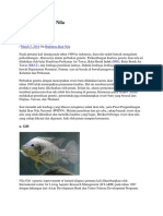 Jenis ikan nila strain nefi.docx