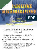 Pert-4 Metabolisme Mikroorganisme