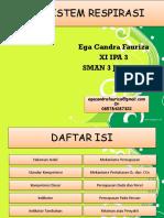 sistemrespirasi-120211061226-phpapp01
