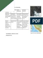LB.edafO Preg3cuestionario.docx