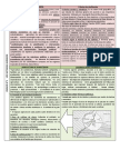 UNIDAD 9- SISTEMAS AGRARIOS.docx
