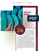 24 Digestive System.compressed
