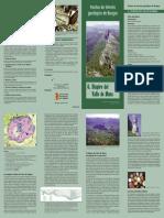 6DiapiroValleMena.pdf